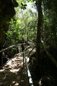KIWA-luolapolku