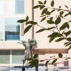 Wäinö Aaltosen Genius ohjaa nuoruutta -patsas epätarkkana taustalla Turun Yliopistonmäellä